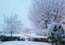 La neve di Carnevale, il punto dall'entroterra