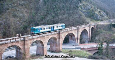 Treno Pergola